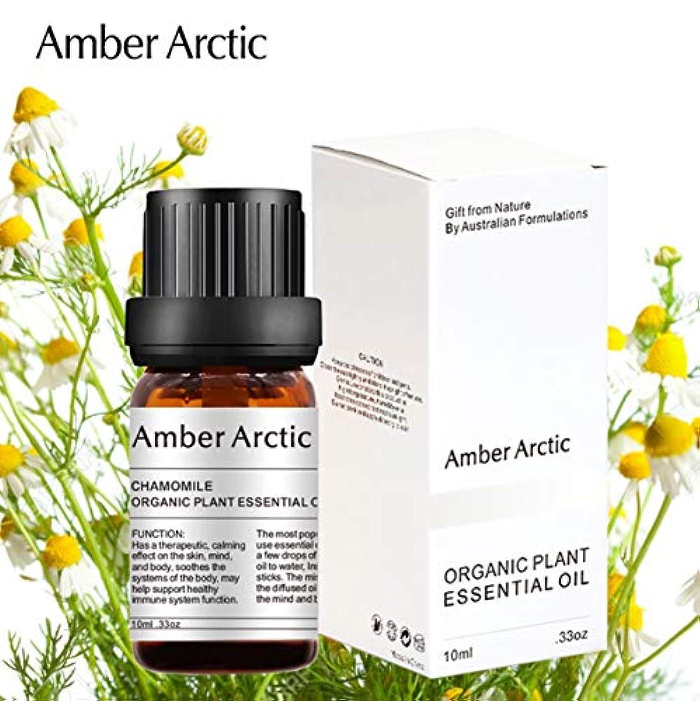 伝染性終点最も早いAmber Arctic カモミール エッセンシャル オイル、100% ピュア 天然 アロマテラピー カモミール オイル スプレッド 用 (10ML) カモミール