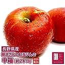 紅玉 りんご 柳沢さんの低農薬栽培紅玉リンゴ 中箱(約9~12個入)林檎 リンゴ りんご 果物 フルーツ