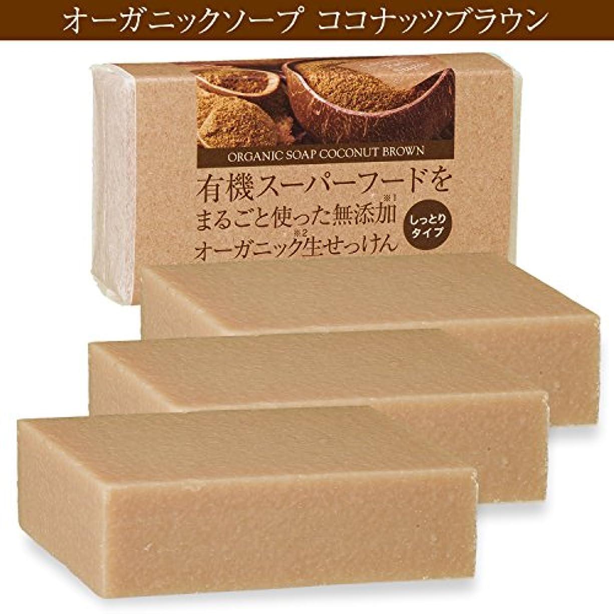 騒ぎ安心アンカーココナッツシュガー石鹸 3個 有機ココナッツオイルをまるごと使った無添加オーガニック生せっけん(枠練)Organic Raw Soap Coconut Brown 80g コールドプロセス製法 (日本製) メール便