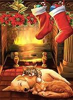 tree-free Greetingsクリスマスカードと封筒のセット、10、5x 7インチ、Silent Night ( hb93349)