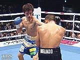 田口良一×ミラン・メリンド(2017)WBA・IBF世界ライトフライ級王座統一戦