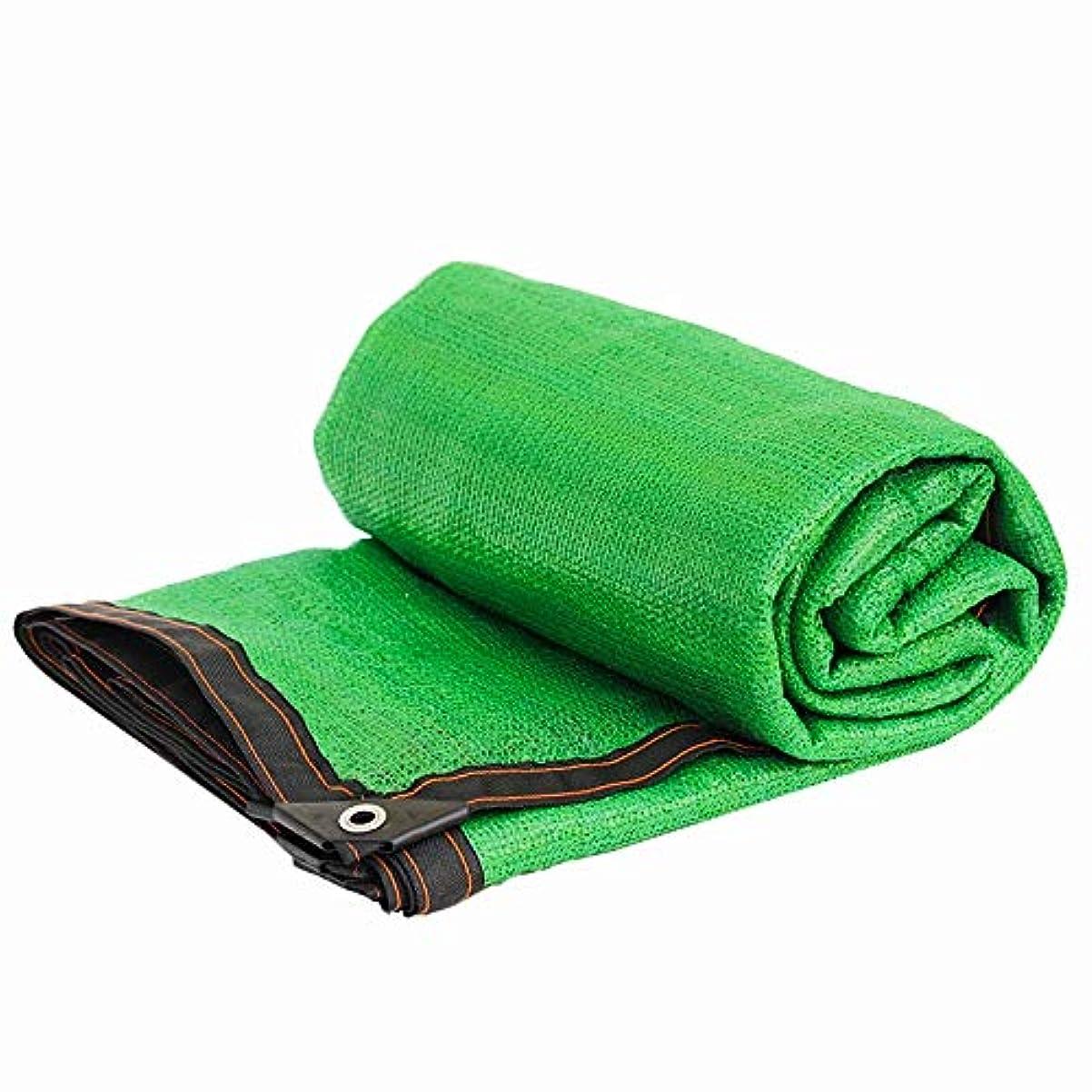 頻繁に議題きらめきシェーディングネット日よけネット日よけネット85%日焼け止め遮光プロジェクトバルコニー車の花緑の植物断熱材ネット緑8件のピン (Size : 2x1m)