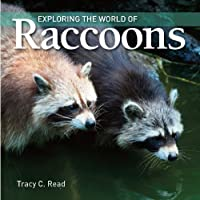 Exploring the World of Raccoons by Tracy Read(2010-03-11)