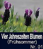 Vier Jahreszeiten Blumen(Frühsommer) Nr. 01 (German Edition)