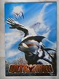 2004年映画パンフレット ウルトラマン URTRAMAN 別所哲也 遠山景織子 大澄賢也 裕木奈江
