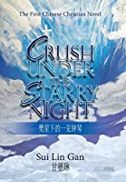 Crush Under the Starry Night: The First Chinese Christian Novel