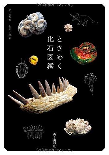 ときめく化石図鑑 (Book for Discovery) 土屋 香