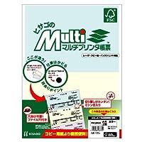 ヒサゴ マルチプリンタ帳票FSC A4カラー2面 (100枚) FSC2010