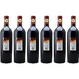 [6本セット] ロッソ ピチェーノ スペリオーレ ロッジョ デル フィラーレ(Rosso Piceno Superiore Roggio del Filare) 2013 赤 イタリア 750ml×6本
