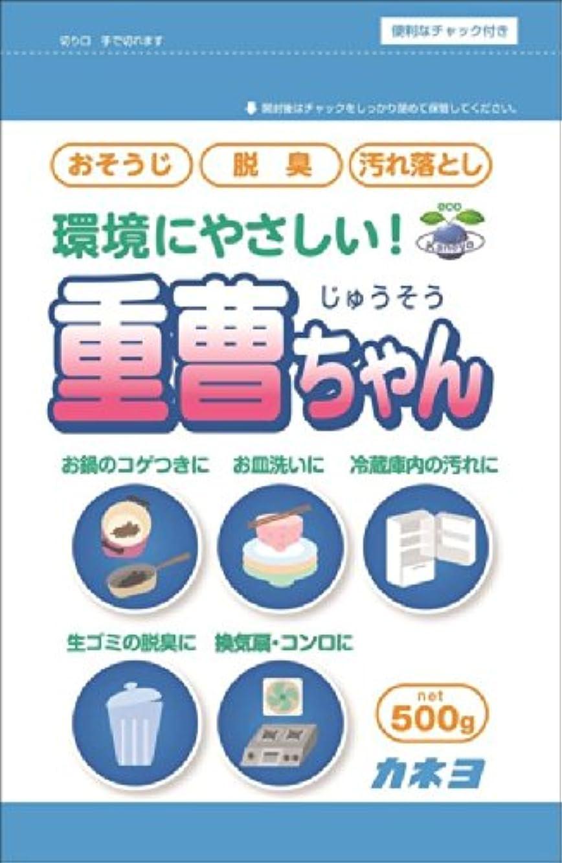 シェル離す衝突するカネヨ石鹸 重曹ちゃんSP 500g