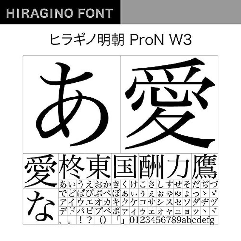 から電気の相反するOpenType ヒラギノ明朝 ProN W3 [ダウンロード]