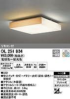 オーデリック 和照明 【OL 251 834】【OL251834】 和室