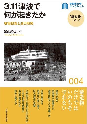 3.11津波で何が起きたか