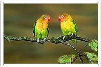 不可分鳥のティンサイン 金属看板 ポスター / Tin Sign Metal Poster of Inseparable Birds