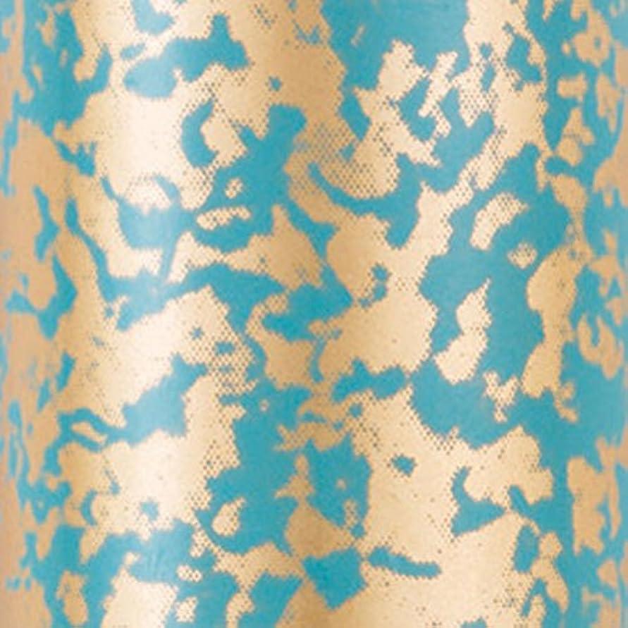 もっとリングバック挑むBioSculpture ミラーフォイル ジェイド ジェルアート専用のアートツール アート材