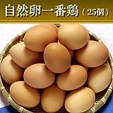 水郷のとりやさん 鶏卵 放し飼い自然卵 『一番鶏』 25個詰(20個+破損保障分5個) 【……