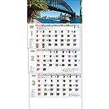 トーダン 2022年 カレンダー 壁掛け ワールド3ヶ月メモ-上から順タイプ- TD-30781
