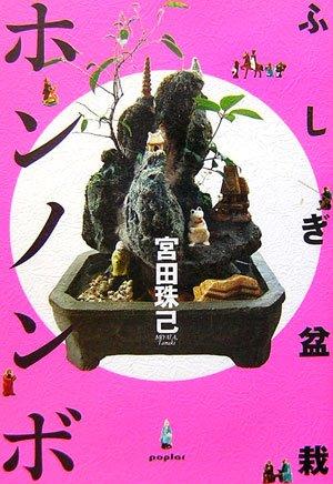 ふしぎ盆栽ホンノンボの詳細を見る