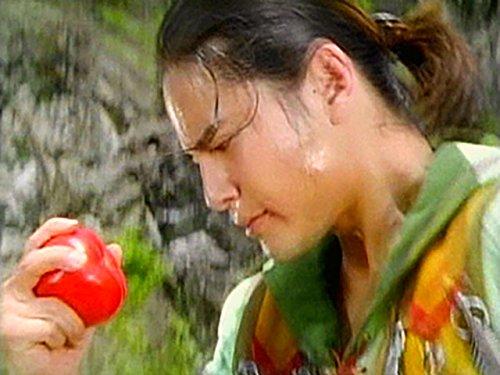 トマトの試練