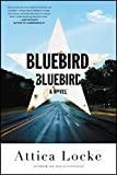 Bluebird, Bluebird (English Edition)