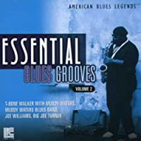 Essential Blues Grooves Vol. 2