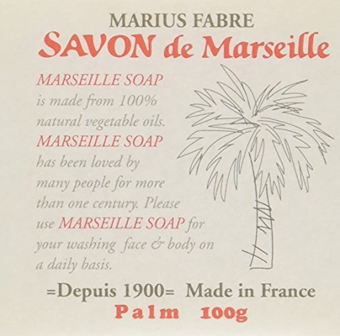 予定慣習影響サボン ド マルセイユ パーム 100g
