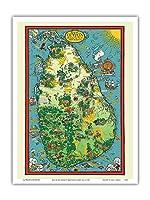 スリランカ - セイロンティーボード広告 - 絵図 によって作成された マクドナルド(マックス)ギル c.1933 - アートポスター - 23cm x 31cm