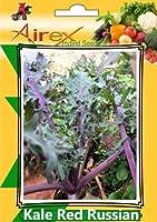 SEEDケールレッドロシア(ハイブリッド)種子(ケールレッドロシアの10パケット)種子(AVG 20-30種のパック*パケットごと10)シード(パケットあたり300)