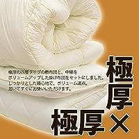 防ダニ 抗菌 防臭 吸汗 速乾加工アクフィット中綿使用 掛敷2点布団セット シングル
