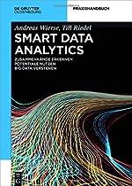 Smart Data Analytics: Mit Hilfe Von Big Data Zusammenhaenge Erkennen Und Potentiale Nutzen (De Gruyter Praxishandbuch)