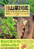 北海道山菜図鑑 (Alice field library)