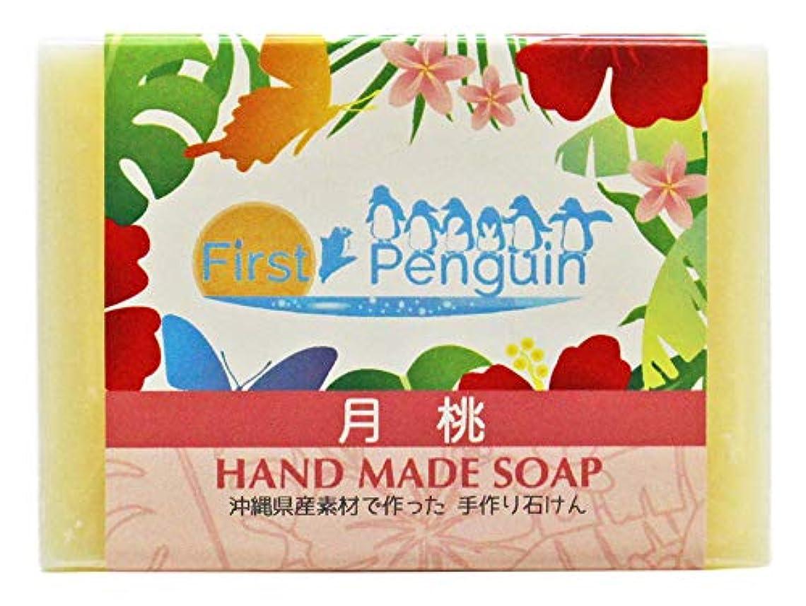 行進冷凍庫置くためにパック手作り洗顔石けん 月桃 100g