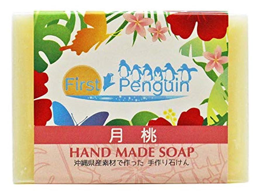 コインランドリー余裕がある適応する手作り洗顔石けん 月桃 100g