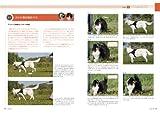 ドッグ・トレーナーに必要な 「犬に信頼される」テクニック: 「深読み・先読み」の第2弾、問題行動はこれで直せる! (犬の行動シミュレーションガイド) 画像
