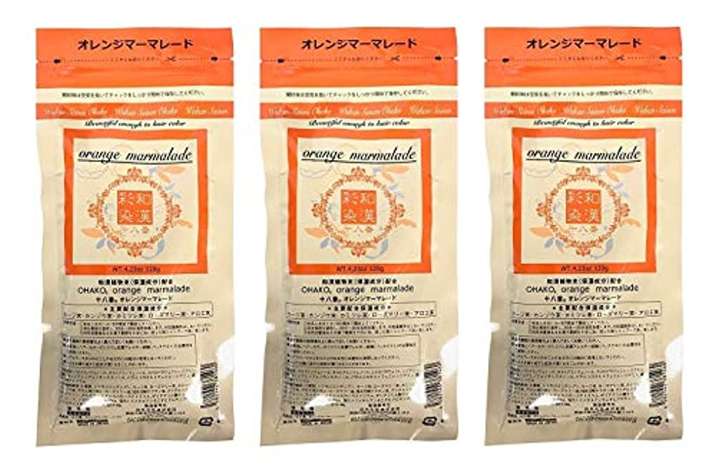 瞑想プレフィックスやけど【3個セット】グランデックス 和漢彩染 十八番 120g オレンジママーレード