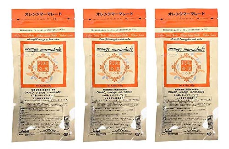 空洞柱栄光【3個セット】グランデックス 和漢彩染 十八番 120g オレンジママーレード