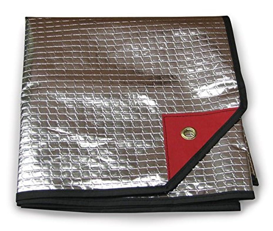 取得する器官ヘアStansport Sportsman's Polarshield Emergency Blanket [並行輸入品]