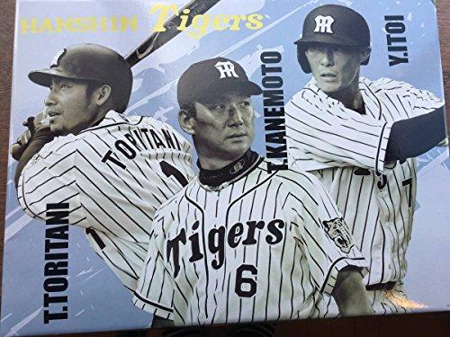 阪神タイガース応援セット バスタオル、フリース、ユニフォーム他6点セット、クリアファイル付き