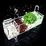 トトハウス(TOTO HOUSE) 新型のフィルター 水族館 水槽専用クリーン ストレーナー水族館フィルタボックス 水槽専用フィルター 酸素活性 フィルター ボックス (4)