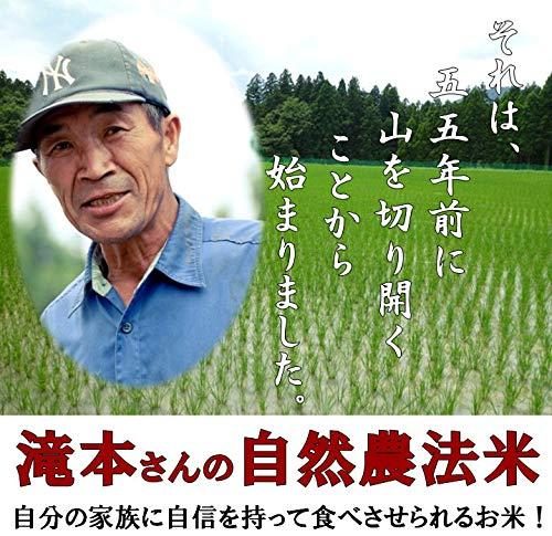 【無農薬】 【玄米】 10kg 福井県産 令和元年産 新米 自然農法 米 無農薬米 有機栽培 玄米 無化学肥料
