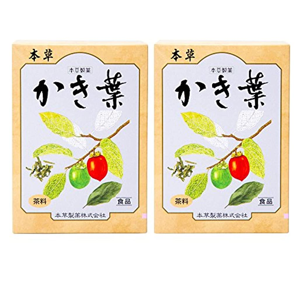 ディンカルビルハイライト恐ろしい本草製薬 かき葉 2個セット