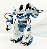 2足歩行でここまで動く★ロボットラジコン スーパーロボット ブルー★
