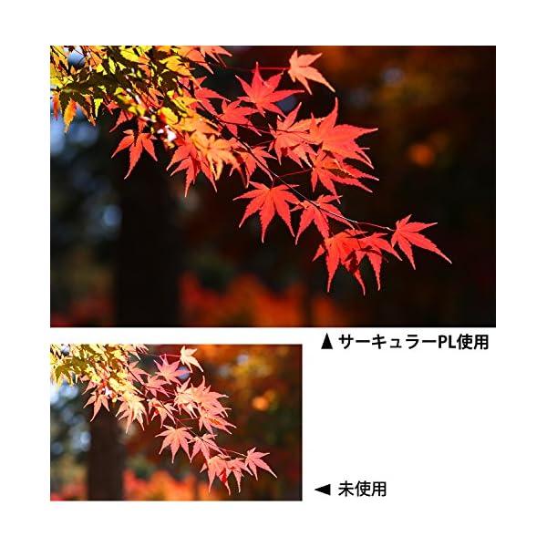 Kenko カメラ用フィルター PRO1D W...の紹介画像6
