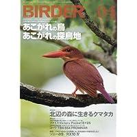 BIRDER(バーダー)2018年4月号 あこがれの鳥・あこがれの探鳥地