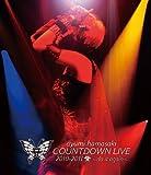 ayumi hamasaki COUNTDOWN LIVE 2010-2011 A(ロゴ) ~do it again~ [Blu-ray]