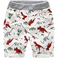 Weixinbuy Boys' Little Dinosaur Printed Casual Cotton Summer Beach Shorts