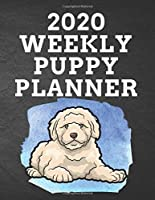 """2020 WEEKLY PUPPY PLANNER: 8.5""""x 11"""" 115 Page Goldendoodle Dog Lover Gift with Blue on Black Back Academic Year At A Glance Planner Calendar With To-Do List and Organizer And Vertical Dated Pages Great for Goldendoodle Fans (Goldendoodle 2020 Planners)"""