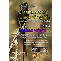 Dreams are the wings of my life - Part 4: Broken wings (English Edition)