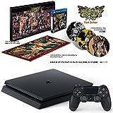 PlayStation 4 ジェット・ブラック 500GB + ドラゴンズクラウン・プロ ロイヤルパッケージ  セット