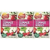 Golden Circle Summer Berries Fruit Drink, 6 x 250ml